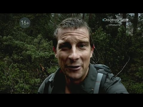 Bear Grylls Breaking Point | Season 1 Episode 6 | Trees and Insects