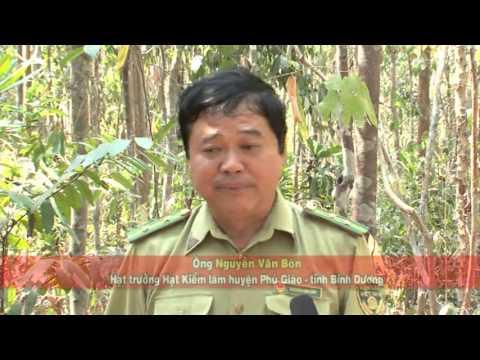 Canh Sat PCCP Binh Duong  04 4 2016