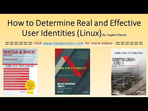 How to Determine Real and Effective User IDs in Linux