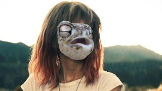Desert Rain Frog Videos 9videos Tv