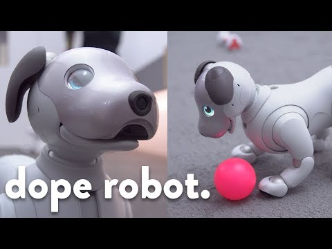 This robot dog is super dope...