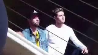 Niall Horan watching Dua Lipa Perform at Poptopia
