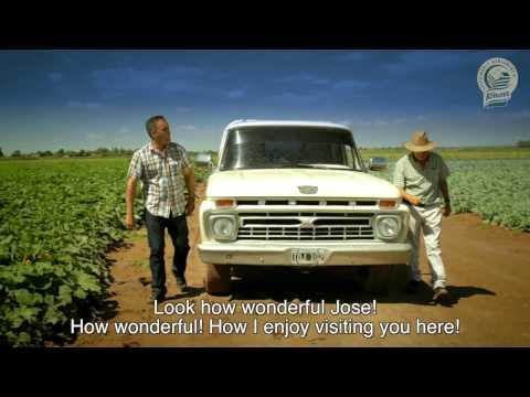 Sustainable Pumpkin Knorr Argentina Farm