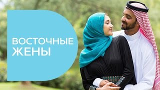 Восточные жены: новая серия