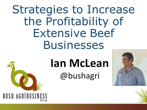 Strategies to increase the profitability of extensive beef businesses