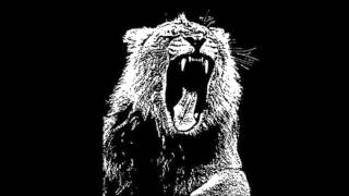 Animals - Martin Garrix (Hypnotik TrapEdit)