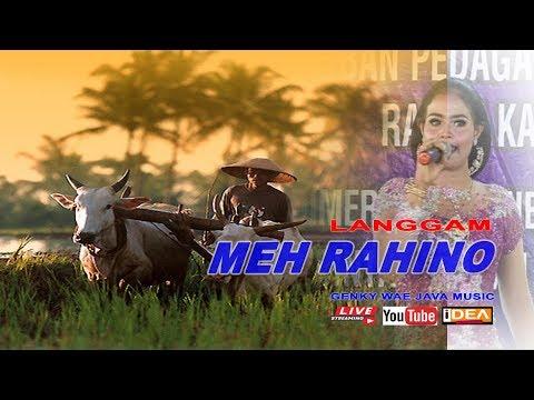 Lirik Lagu MEH RAHINO (Bowo) Langgam Karawitan Campursari - AnekaNews.net