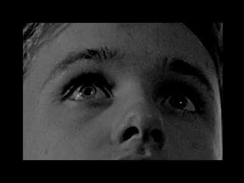 The Stynch (Short Film)