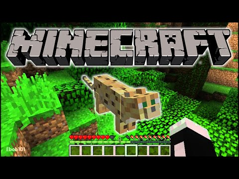 Minecraft: 1.2 Pre Release with Jungles and Ocelots (Seed)