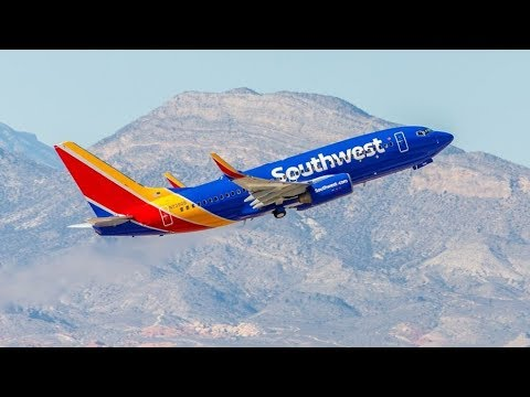 Southwest Airlines Support Dog Issue