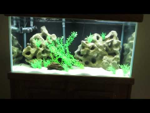 DIY Fake Texas Holey Rock 3D Aquarium Background