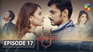 Dil e Jaanam Episode 17 HUM TV Drama