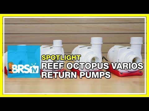 The Reef Octopus VarioS DC powered pump | BRStv Spotlight