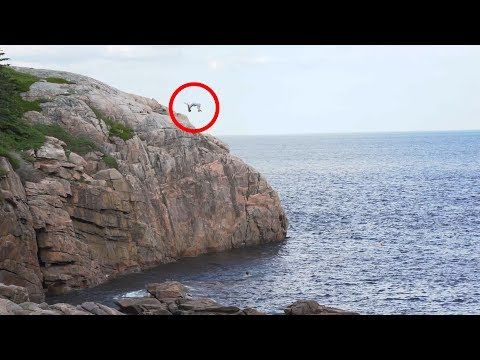 50 Foot Cliff Jumps! | Ingonish, Cape Breton