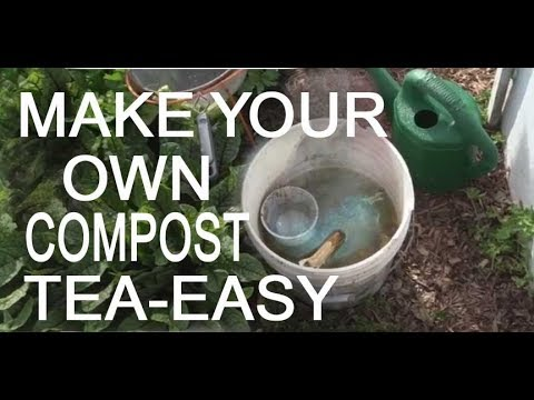 MAKE your Own FREE COMPOST TEA for Vegetable Garden Plants