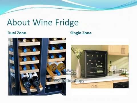 Between Dual and Single Zone Wine Fridge