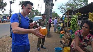 Exploring Sri Lanka's Peaceful City. 🇱🇰