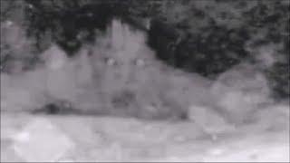 Mes Paranormal 3 / Videos Extraños de Fantasmas