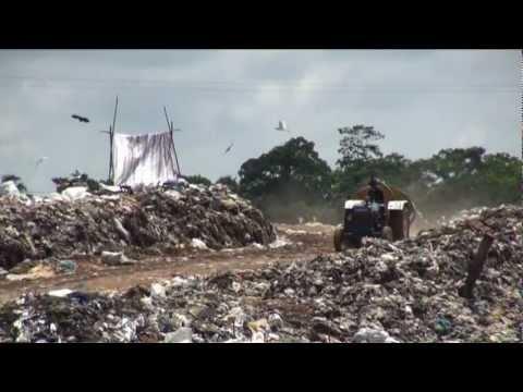 Transitioning to Green Jobs in Sri Lanka (long version)