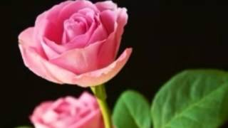 Aaj Pehli Baar Dil Ki Baat Ki Hai [Full Song] (HQ) With Lyrics - Tadipaar