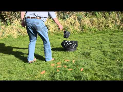 Handiscoop - How to clean sloppy poo from long grass
