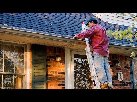 Must-Do Summer Maintenance For Homeowners