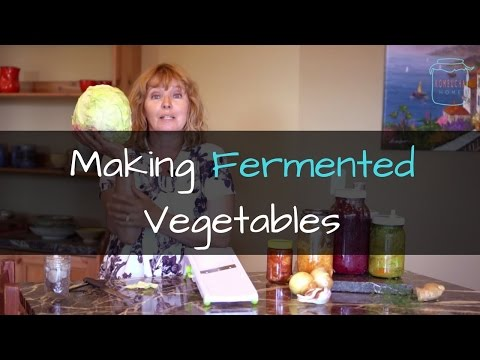 An Overview of Fermented Vegetables - What you need