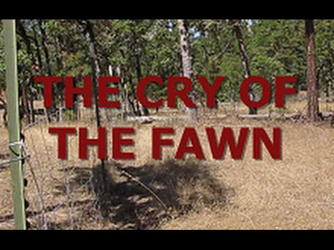 THE CRY OF THE FAWN