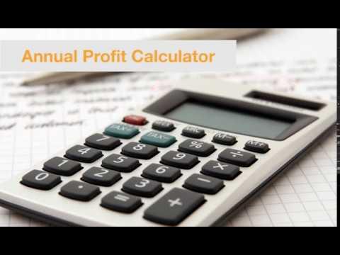 Annual Profit Calculator