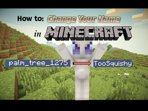 How to Change Your Name in Minecraft PC/Mac Edition! [1.11.2] [2017]