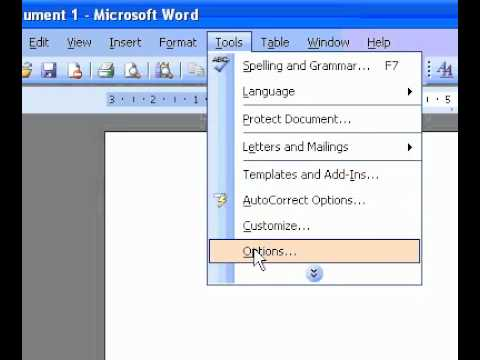 Microsoft Office Word 2003 Display a blue window background