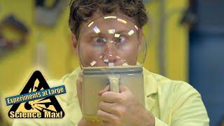 Science Max|MINI MAX!|Bubbles| SCIENCE Education