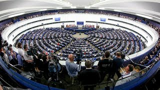 UK MEPs persevere with Brexit on the horizon