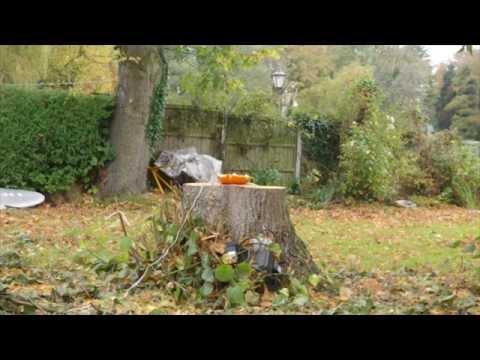 Sparking and Exploding a Pumpkin with Hydrogen