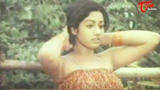 Indian Actress Sridevi