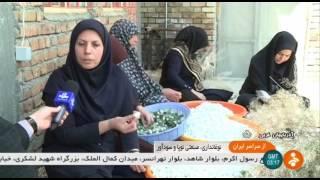 Iran Traditional Silkworm farming, West Azerbaijan پرورش سنتي كرم ابريشم آذربايجان غربي ايران