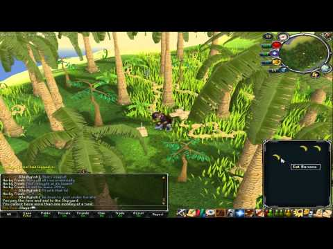 How to get a pet monkey on RuneScape