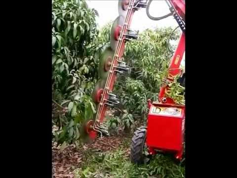 Pruning machines for Orchards Mod. PFS2 /Podadora discos en mango Mod.PFS2.