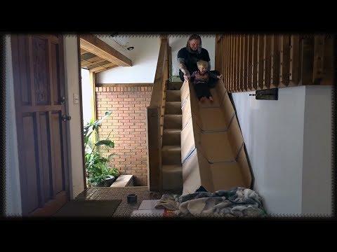 DIY Indoor Cardboard Stairs Slide! Cute Toddler Sliding Family Fun Video For Kids