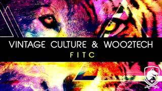 Vintage Culture & WOO2TECH - FITC (Original Mix)
