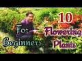 10 Best Summer Flower Plants 🌺🌱For BEGINNERS🥬🌞