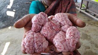 Goat Brain Deep Fry in My Village - Food Money Food