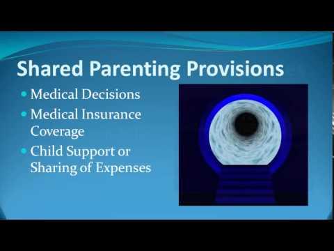 Ohio Shared Parenting