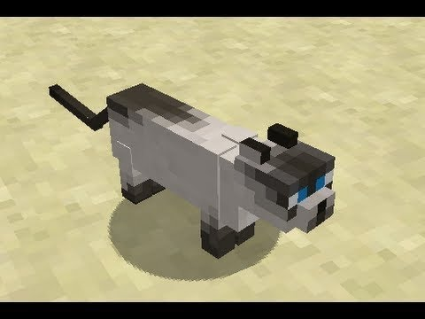 How to leave your kitty at home in Minecraft 1.2