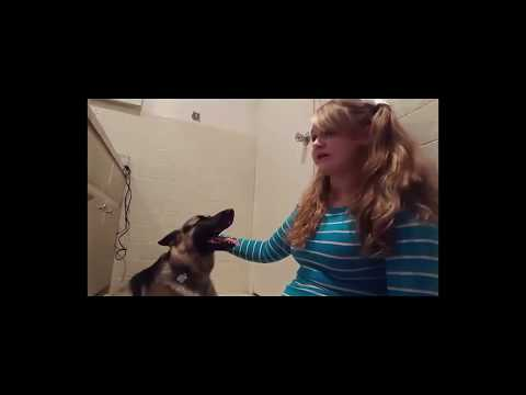 Xxx Mp4 DOG SEX STORY Update Whitney Wisconsin 3gp Sex