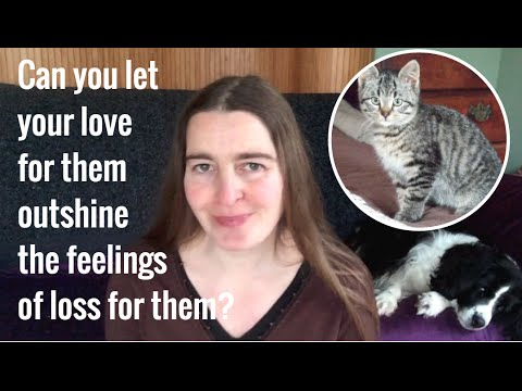 Softening the grief of pet loss (with EFT tapping)