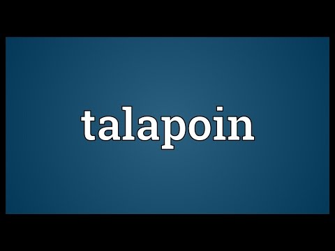 Talapoin Meaning