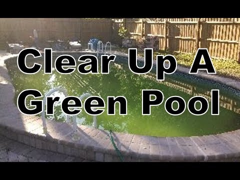 How To Clear Up Green/Cloudy Swimming Pool Water | Short Version