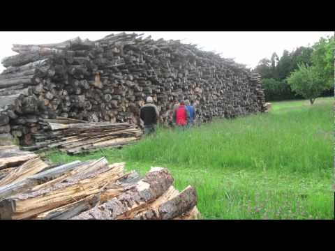 The Expansion of Wood-based Biomass in Austria's Energy Mix