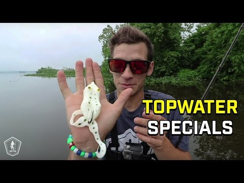 3 Unique Topwater Lures That Will Get Big Bites!
